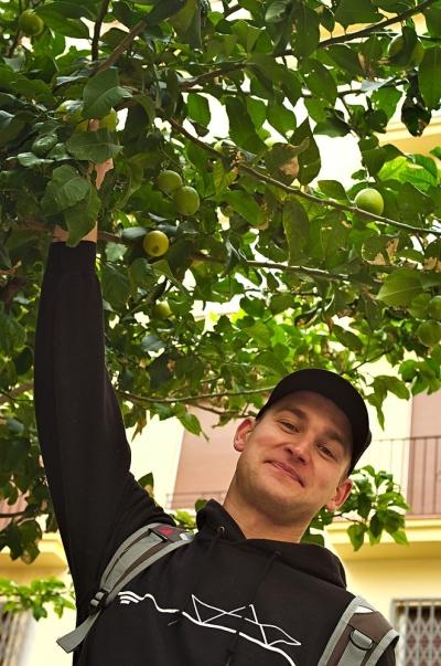 Den ersten Zitronenbaum gesichtet