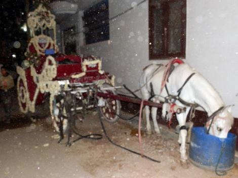 Indische Hochzeitskutsche