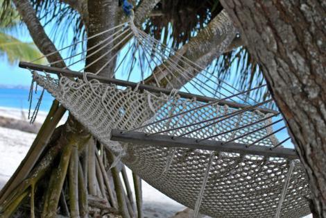 abhängen unter Palmen und freiem Himmel