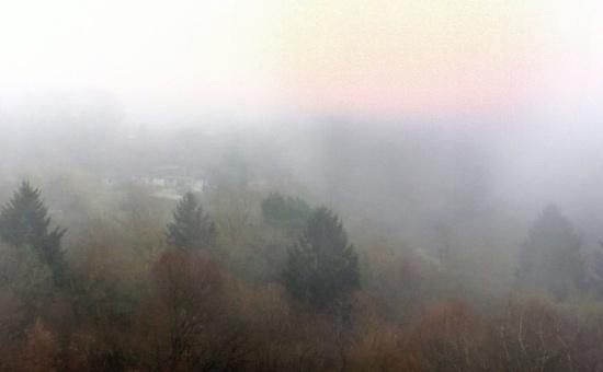 Nebel statt Sofi