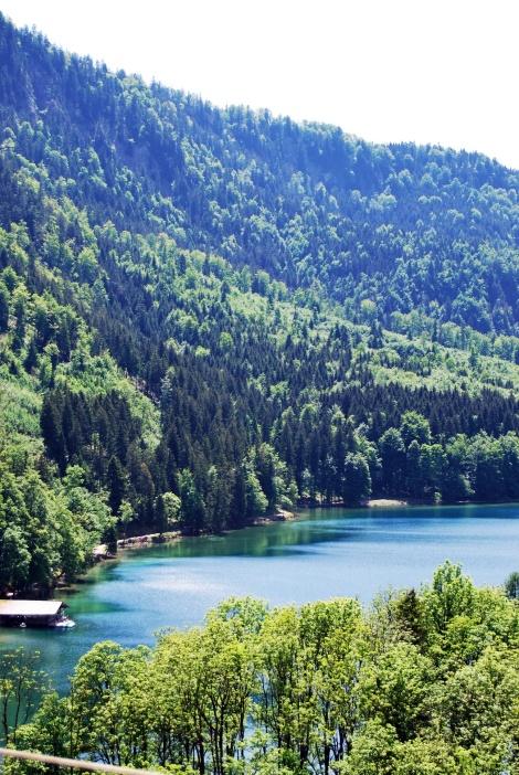 Der Alpsee in Schwangau - einer der saubersten Seen in Deutschland