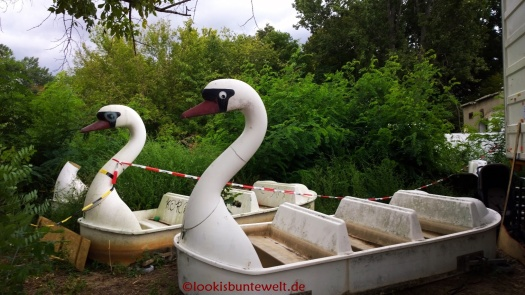 """""""Boote"""" der Schwanenfahrt"""